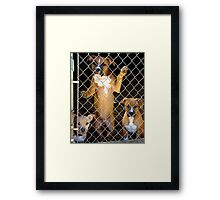 Play Time Yet? Framed Print