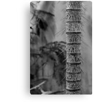 Defensive Spike Tree Canvas Print