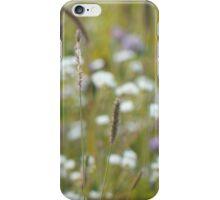Summer grass 24 iPhone Case/Skin