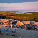 Paine's Creek Sunrise by Nancy Bray