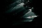 dark ahead! by Dinni H