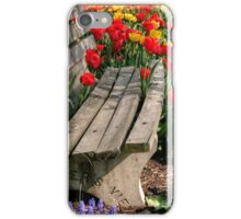 Abducted Park Bench iPhone Case/Skin