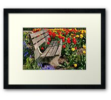 Abducted Park Bench Framed Print