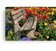 Abducted Park Bench Canvas Print