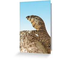 Lace monitor up a tree. Greeting Card