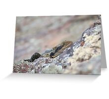 Hiding Water Dragon. Greeting Card