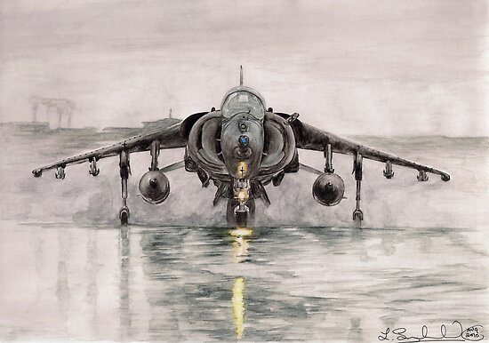 Harrier in the mist by L K Southward