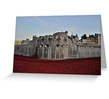 Poppies at the Tower of London - In the evening Greeting Card