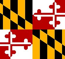 Maryland State Flag by Mark Podger