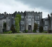 Birr Castle by Kaitlin Bush