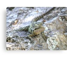 Water Dragon. Canvas Print
