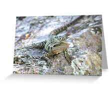 Water Dragon. Greeting Card