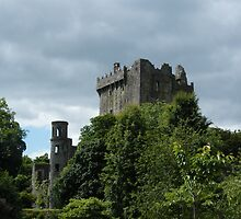 Blarney Castle by Kaitlin Bush