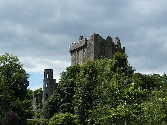 Blarney Castle by Kaitlin Bush