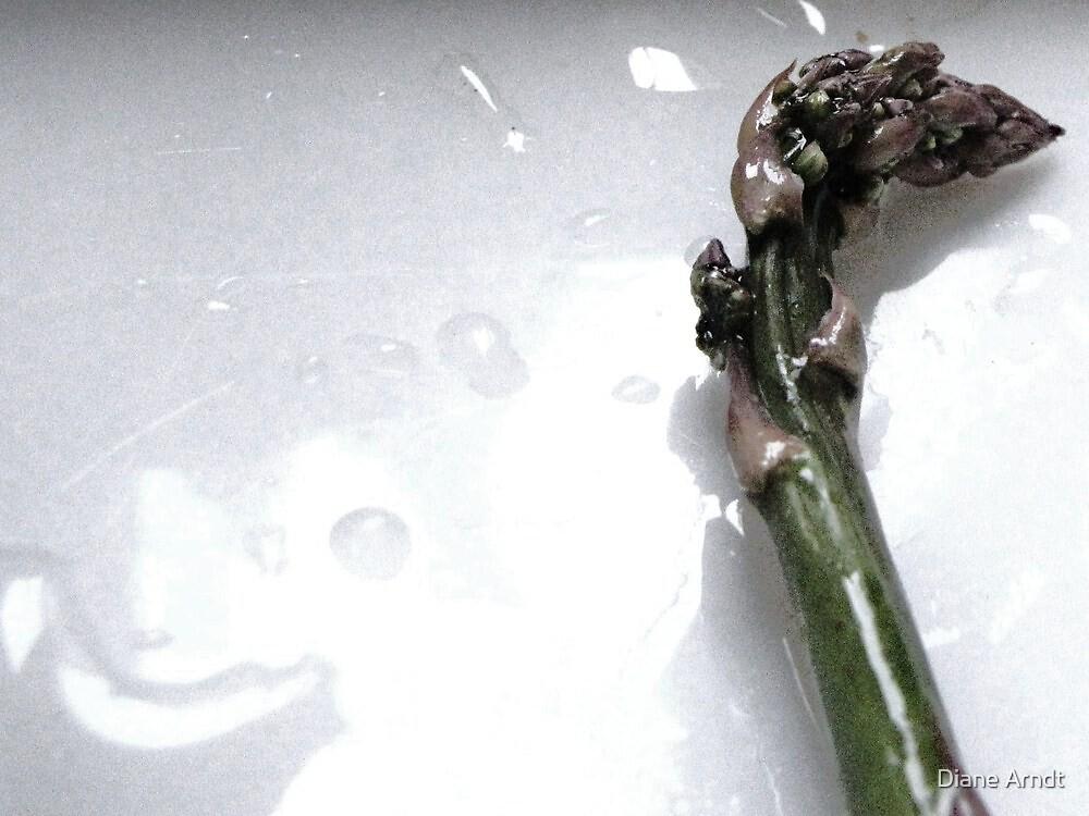 Asparagus by Diane Arndt