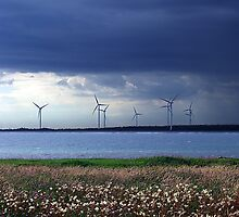 Power From The Wind by George Cousins