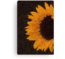 sun.flower Canvas Print