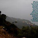 Hillside view Alentejo area of Portugal (southeast of Lisboa) by Wayne Cook