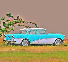 1956 Buick Special in HDR by WTBird