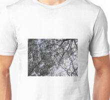 Branches of tress under sun light Unisex T-Shirt