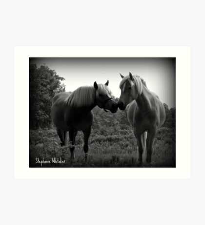 Sublime Equine Art Print