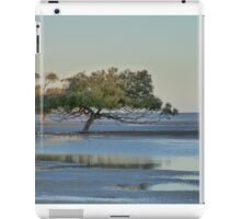 Clairview Mangroves  Panorama  iPad Case/Skin