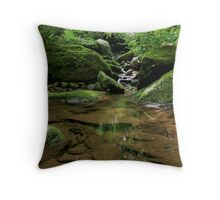 Stoney Fork Throw Pillow