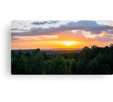 Pines at Sunset Canvas Print