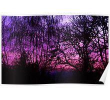 indigo sunset Poster