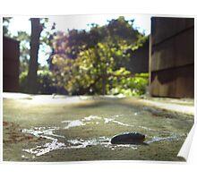 a Slugs Life Poster