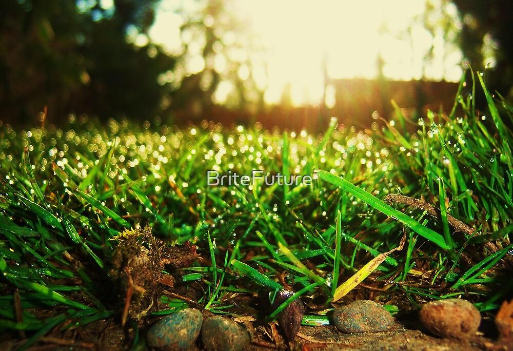 Grass Realm by BriteFuture