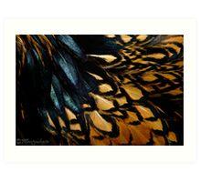 Fowl Feathered Art Print