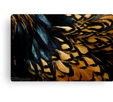 Fowl Feathered Canvas Print