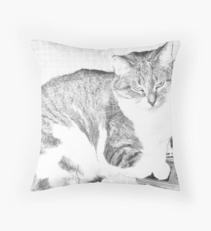 Malibu Sketch Throw Pillow
