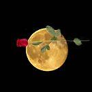 Love The Moon by Linda Miller Gesualdo