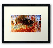 Shark amongst the rust Framed Print