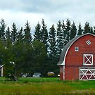 The Old Red Barn by MaeBelle