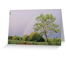 Double rainbow Greeting Card
