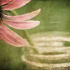 Coneflower Jar by JulieLegg
