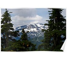 View from Mt. Washington, Vancouver Island, BC Poster