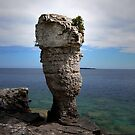 Flowerpot Island - Tobermory, Ontario, Canada by jules572