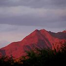 Red Mountain Sunset by carol selchert