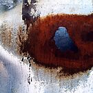 Burnt Car by sedge808