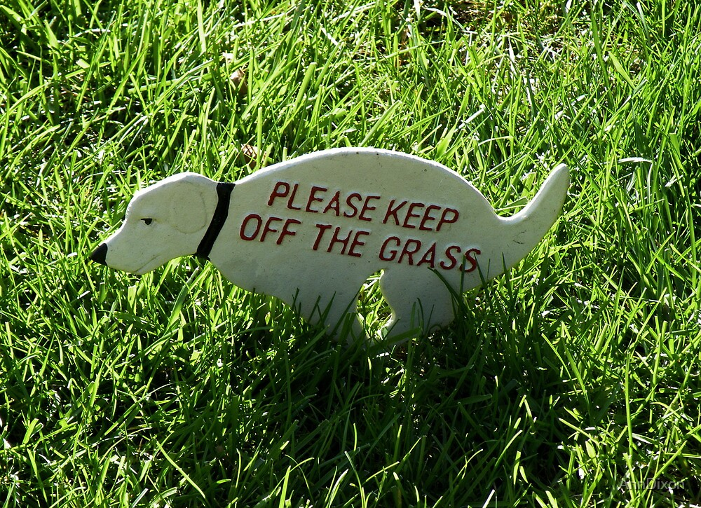 Keep off the Grass by AnnDixon