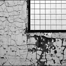 Weathered Wall by sedge808
