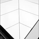 White Fin by sedge808
