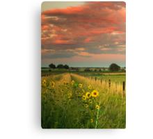 Under The Summer Sky Canvas Print