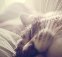 _ sleeping beauty _ by Louise LeGresley