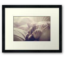 _ sleeping beauty _ Framed Print