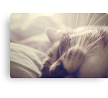 _ sleeping beauty _ Canvas Print